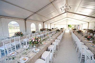 Wedding and Event Rentals